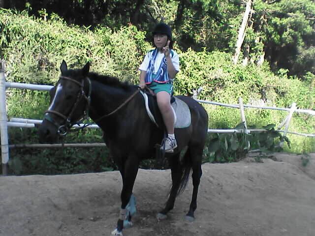 乗馬は楽しい!