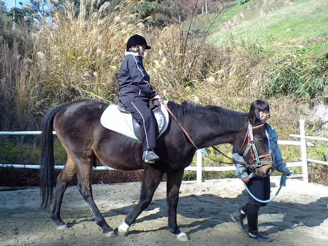馬装検定とホースセラピー