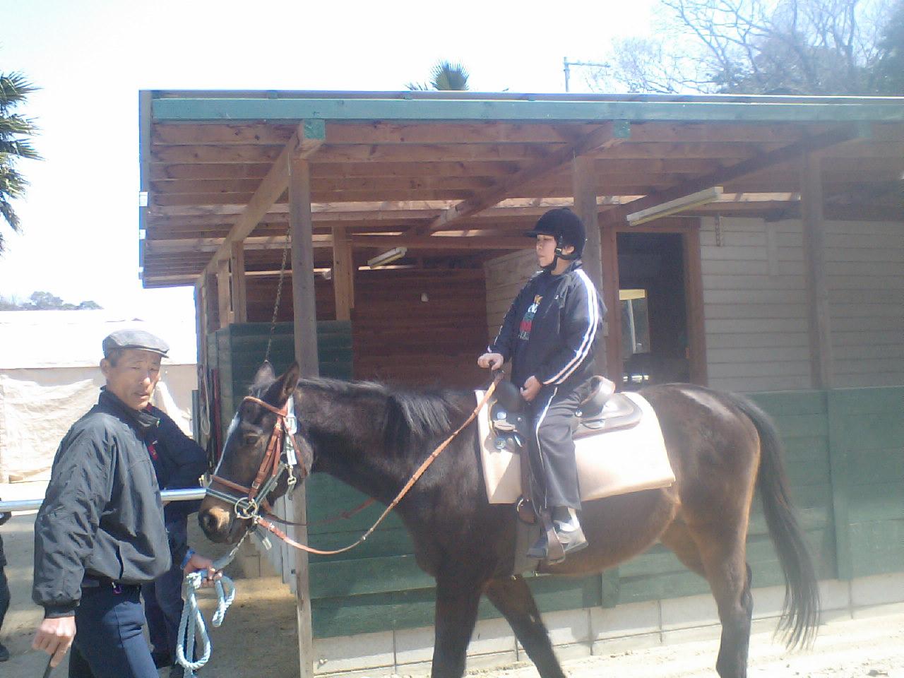 乗馬でリハビリ