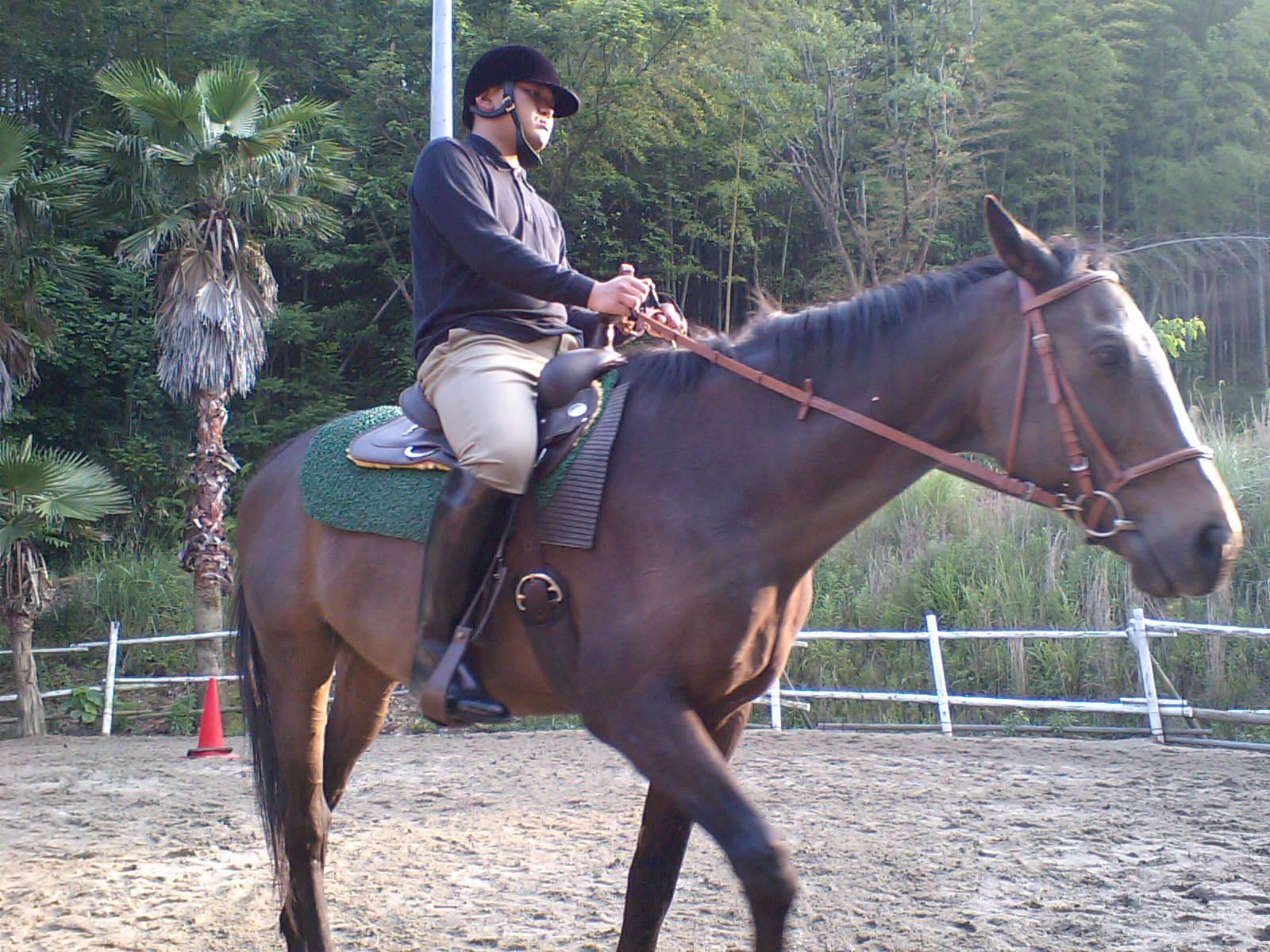 集中して馬に乗る