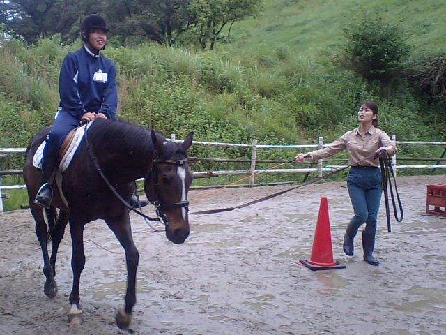 曳き馬、乗馬体験