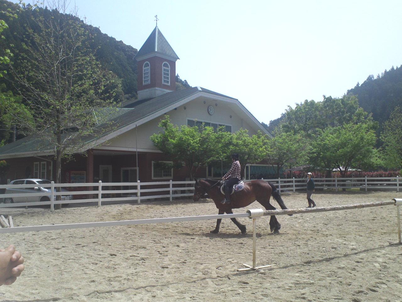 徳島県コルツ乗馬クラブ