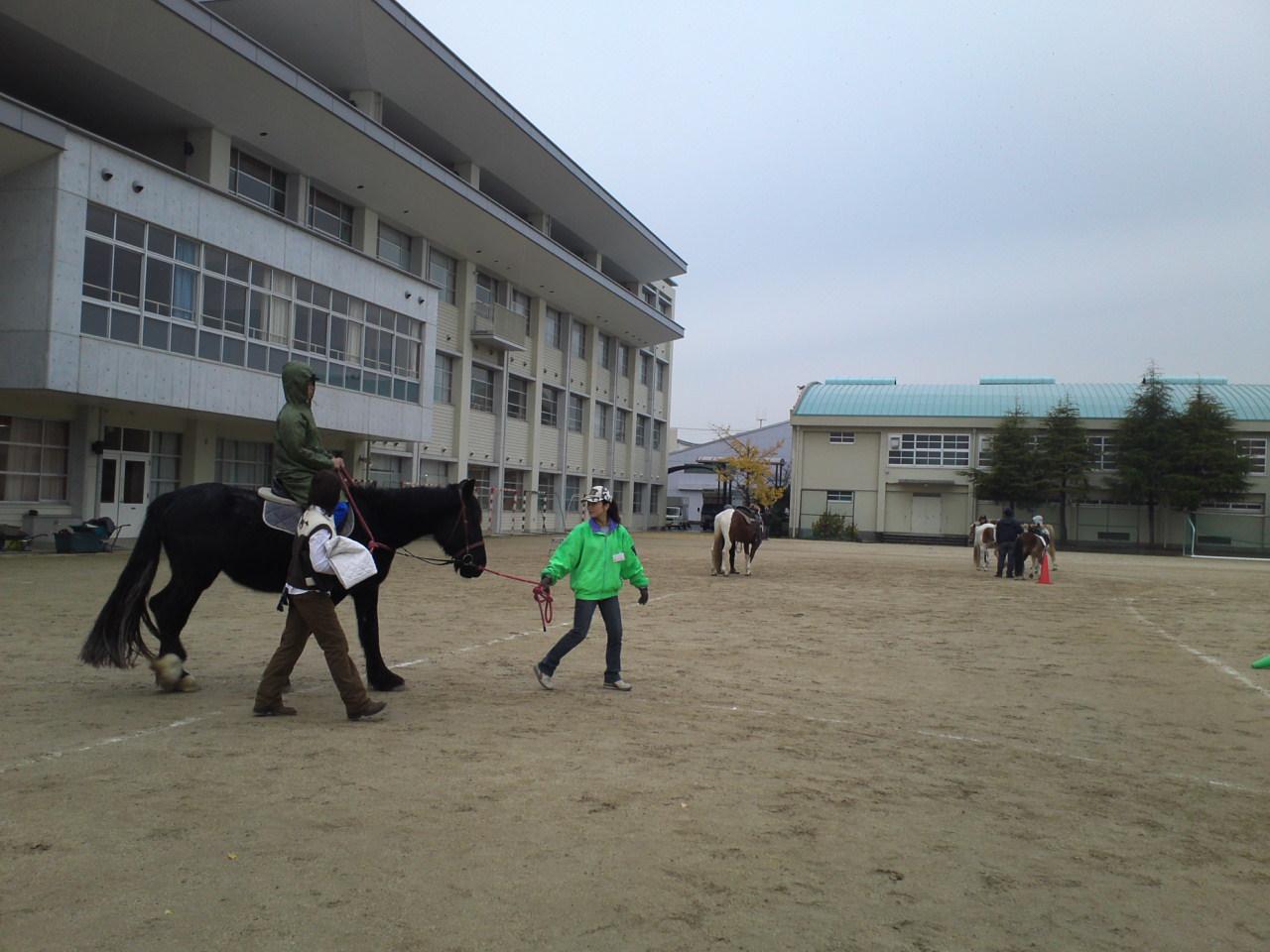 成良中学校ホースセラピー